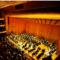 Utah Symphony | Utah Opera Updates Health Policies to Ensure Performances Continue Safely