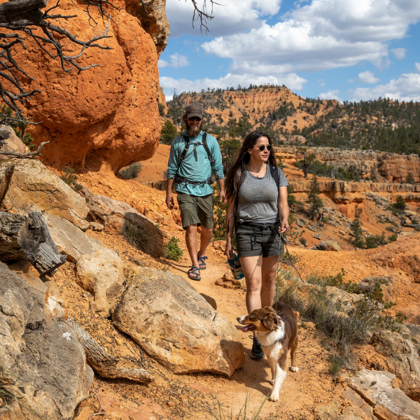 Hikers in Red Canyon