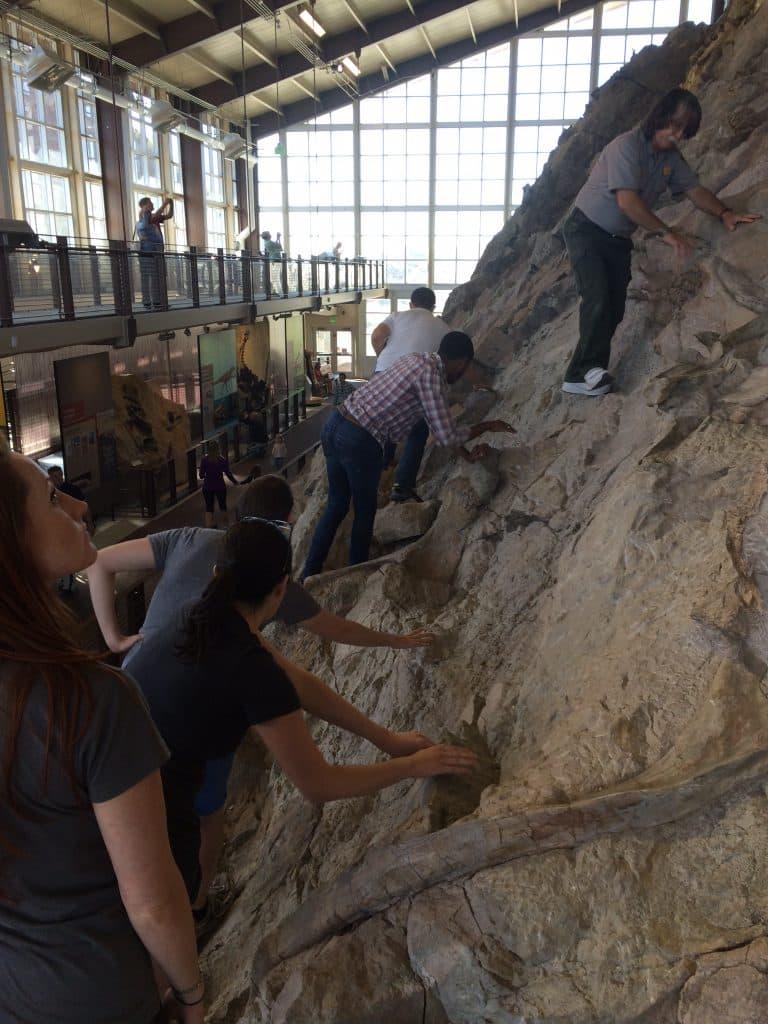 Climbing the rock face