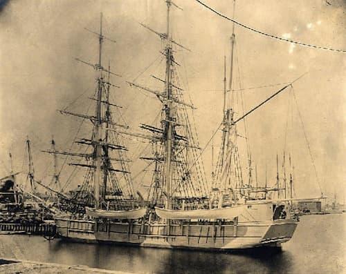 Whaling History And Descriptions Utah Opera