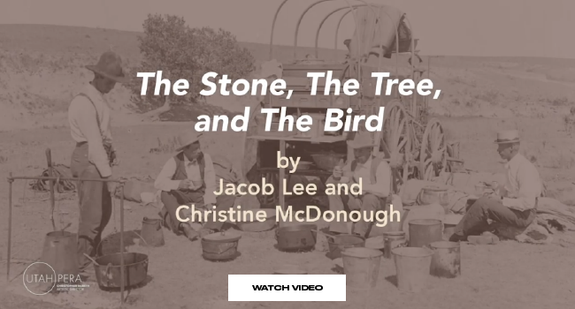 """The Stone, The Tree, and The Bird by Jacob Lee and Christine McDonough"""