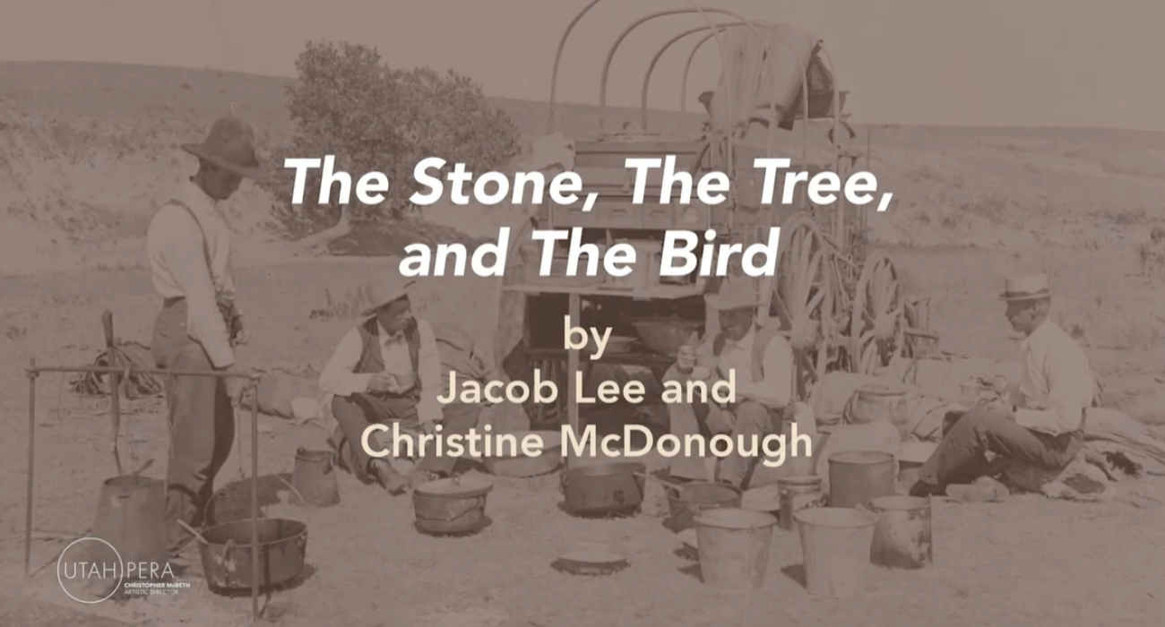 The Stone, The Tree, and The Bird